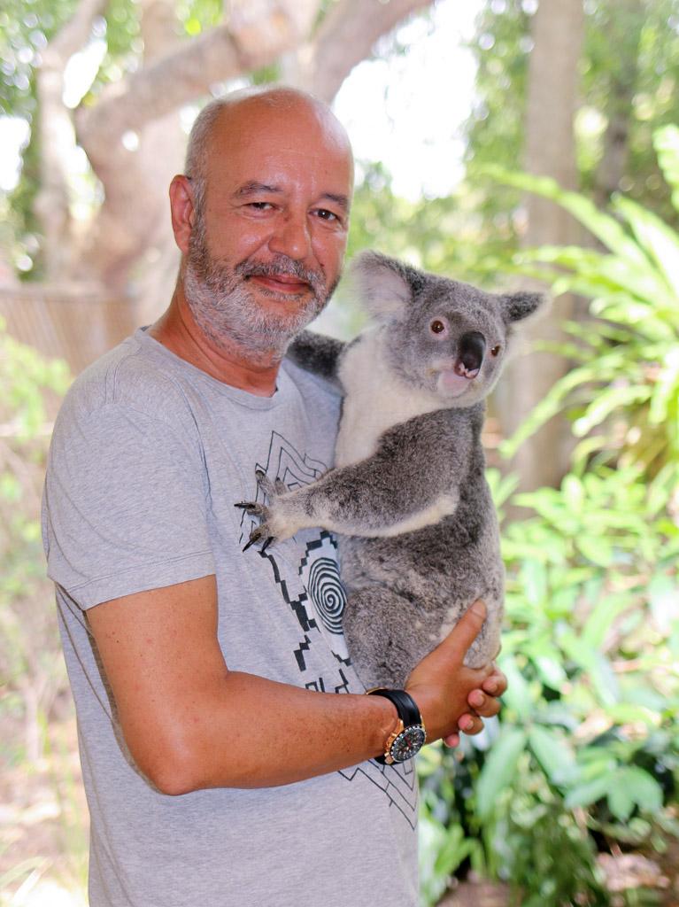 Tourist, Koala, Lone Pine Park, Brisbane, Australia