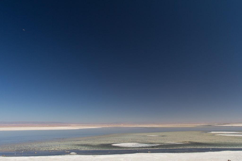 Laguna, Salar De Atacama, Atacama Desert, Chile