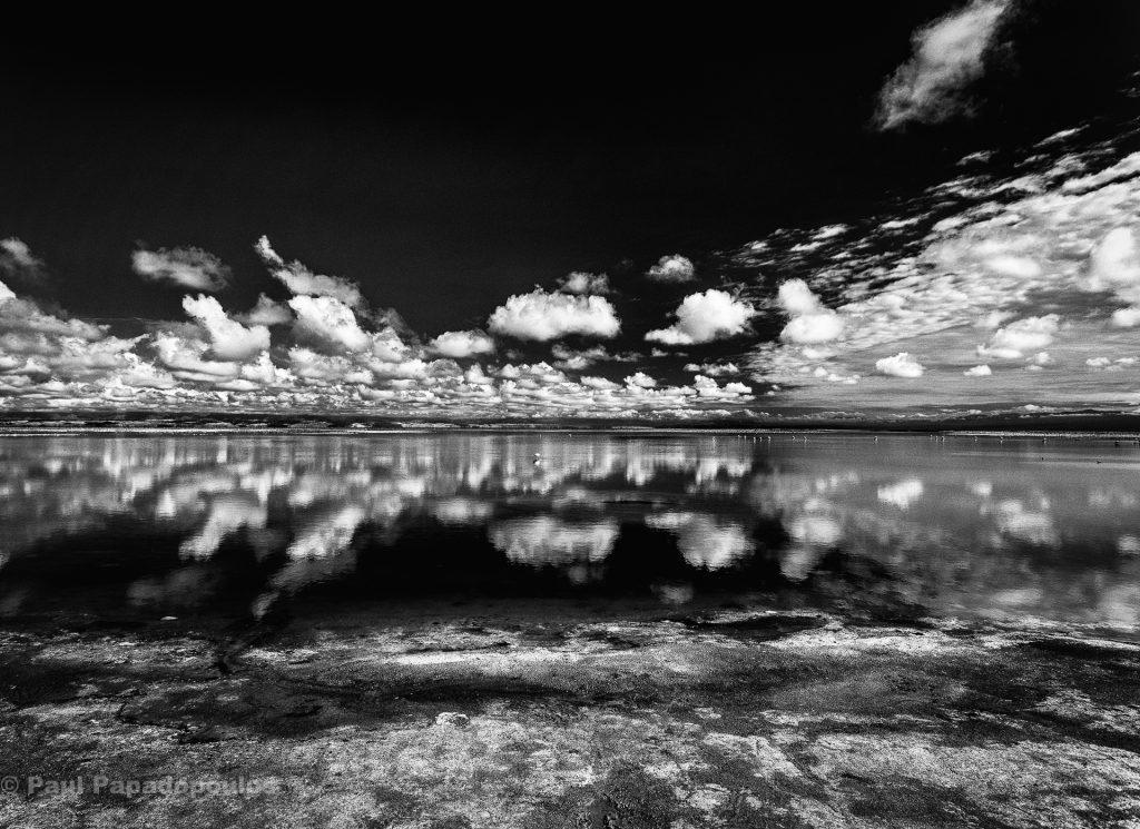 Solitude - Laguans Chaxa, San Pedro de Atacama, Chile